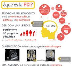 La Parálisis Cerebral Infantil se produce en 3 de cada 1.000 recién nacidos de los que casi la mitad habrán tenido un nacimientoprematuro. Aunque no hay un registro oficial del número total de pe…