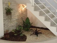 paredes de vidro   Jardim, cascas e pedras sobre a terra, parede revestida de pedra ...