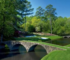 The Masters Tournament kicked off this morning at Augusta National. This world-famous golf course is a picture of perfection. If you are looking for the Augusta National of Dentistry, give Barotz Dental a call today! Augusta National Golf Club, Augusta Golf, Famous Golf Courses, Public Golf Courses, Masters Tournament, Golf Course Reviews, Masters Golf, 2014 Masters, Golf Outing