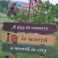 Hubby always says he doesn't understand how he got a country girl who was born and raised in the city haha! It's something you are born with that's for sure!