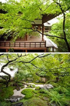 tips for kyoto