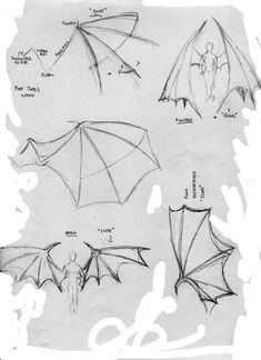 Demon Wings Hairstyles Art Sketches Art Reference Drawings - All For Simple Hair Drawing Techniques, Drawing Tips, Drawing Sketches, Drawing Ideas, Wings Drawing, Drawing Base, Art And Illustration, Demon Wings, Bat Wings