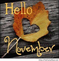 Welcome November Images - November Calendar Sweet November, Hallo November, Welcome November, November Holidays, November Thanksgiving, Thanksgiving Pictures, November Rain, Hello September, November 1st