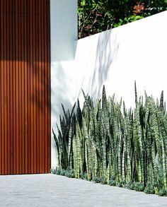Garden Landscape Design, House Landscape, Landscape Architecture, Fence Landscaping, Modern Landscaping, Minimalist Garden, Backyard Projects, Garden Planning, Garden Inspiration