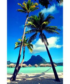 Photo: Originally shared by Paul Richardson Bora Bora, French Polynesia by Saïda . Bora Bora is an atoll in the Society Islands, part of French Top Travel Destinations, Places To Travel, Places To See, Beautiful Islands, Beautiful Beaches, Dream Vacations, Vacation Spots, Romantic Vacations, Italy Vacation