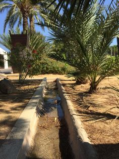 Rincones para descubrir en #BodegasFaelo #enoturismo.  Antigua acequia de riego utilizada para regar la finca.