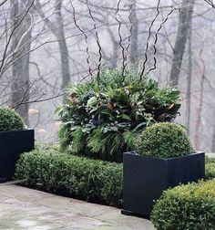 Improvements In The Winter Garden.  http://www.garden-design.me/improvements-in-the-winter-garden/