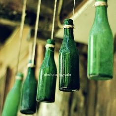 Ever find old bottles in the woods? These are perfect!