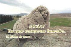 Humor de  Orny