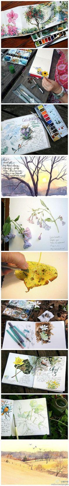 手工DIY 手绘 插画手绘 植物花卉 水彩 美国自由艺术家Cathy Johnson的手绘本,一…