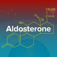 Aldosterone: The Mineralcorticoid That Can Deplete Your Bones Of Calcium, And Cause Other Health Problems