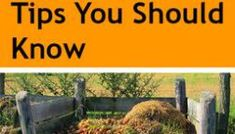 12 Composting Tips You Should Know Organic Gardening, Gardening Tips, Vegetable Gardening, Gardening Books, How To Make Compost, Natural Pesticides, Garden Coffee, Composting Toilet, Free Plants