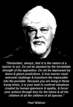 Cap.Paul Watson: The First Day of Summer 2013. https://www.facebook.com/photo.php?fbid=10151679114985932=a.443115070931.234296.155430570931=1 @Sea Shepherd Conservation Society #defendconserveprotect