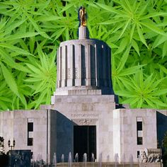 It Has Been A Long, Hard Slog Establishing Licensed and Regulated Medical Cannabis Dispensaries In Oregon | Success Was Finally Realized:  Medical Marijuana Dispensaries Are Officially Legal In Oregon