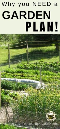 Plan your food garden - why you need to plan and how to plan your garden! #garden #food #homesteading