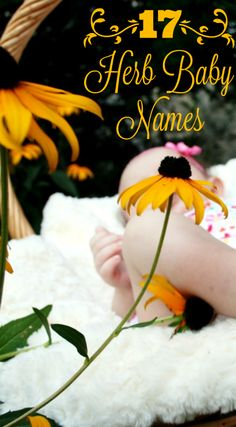 17 Herb Baby Names - For when you want a baby name with a touch of nature.