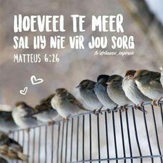 Matteus 6:26
