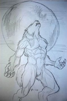 An appealing fuck-ton of werewolf references. Werewolves are a tad simpler to define than aliens or natural deformities; virtually every werewolf is depicted as (obviously) a half human half wolf. In virtually every instance, the human grows larger,. Werewolf Tattoo, Werewolf Art, Werewolf Drawings, Cool Art Drawings, Art Drawings Sketches, Animal Drawings, Fantasy Drawings, Dark Fantasy Art, Horror Art