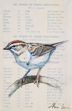 Chipping Sparrow Original Painting by WildPaintings on Etsy