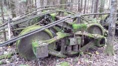 Image from https://bdn-data.s3.amazonaws.com/blogs.dir/445/files/2016/11/abandoned-rail-cars.jpg.