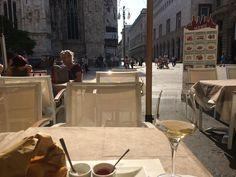 Signorvino Wine Bar Milan Milan, Wine, Bar, Places, Lugares