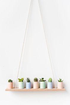 Cactus shelfie                                                                                                                                                                                 More