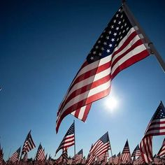 Happy Veteran's Day, specially to all the past and present members of our armed forces.  Thank you so much for your service. @veterans.day.2017 #veteransday #thankaveteran #happyveteransday #realtorforlife #realtor #houseforsale #sellingnaperville #buyinghouses #houseforveterans #localrealtors - posted by Barbara (Basia) Geiger https://www.instagram.com/realtorbasia - See more Real Estate photos from Local Realtors at https://LocalRealtors.com
