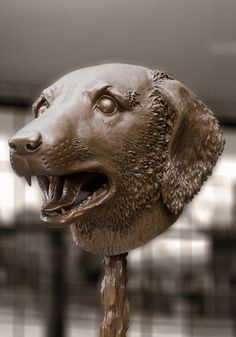 Ai Weiwei bronze dog head, part of the exhibition Circle of Animals/Zodiac Heads on display at Somerset House from 12 May Chinese Astrology, Chinese Zodiac, Animal Sculptures, Sculpture Art, Lisson Gallery, Wei Wei, Ai Weiwei, Jasper Johns, Contemporary Sculpture