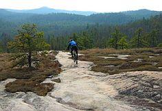 DuPont State Forest - NC-Cedar Rock Trail 4 mi of slick rock. Dupont State Forest, Nc Mountains, Travel Information, Mount Rainier, Mountain Biking, North Carolina, Trail, Hiking, Outdoors