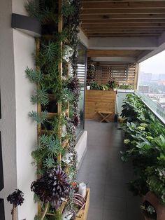 家装辛苦半年,阳台的花花世界初完工