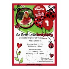 Sweet Ladybug Birthday Invitation ADORABLE (photo).  $2.45
