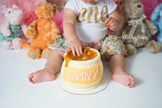 Shepherdstown WV, Photographer, Photography, First Birthday, Cake Smash, Gold and Pink, Winnie The Pooh, Charles Town WV, Martinsburg WV, Maryland Photographer, West Virginia Photographer
