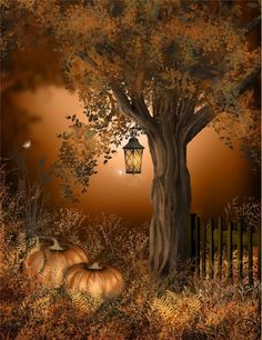 Autumn. Love this pic!!!