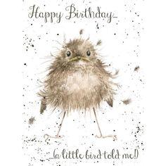 Wrendale Designs Happy Birthday Greeting Card A Little Bird told me Happy Birthday Animals, Happy Birthday Images, Happy Birthday Greetings, Animal Birthday, Beautiful Birthday Images, Happy Birthday Yoga, Happy Birthday Painting, Happy Birthday Cheers, Happy Birthday Little Sister