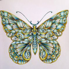 #johannabasford #magicaljungle #butterfly #coloringbook # polychromos #…