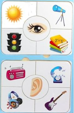 Five Senses Preschool, My Five Senses, Senses Activities, Pre K Activities, Kids Learning Activities, Body Parts For Kids, Body Parts Preschool, Activities For 2 Year Olds Daycare, Cute Powerpoint Templates