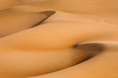DESERT WAVES - Sandscape project