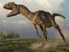 A smaller cousin of the Tyrannosaurus rex, called Allosaurus, may have fed on its prey in a fashion similar to modern-day falcons about 150 million years ago in the late Jurassic period