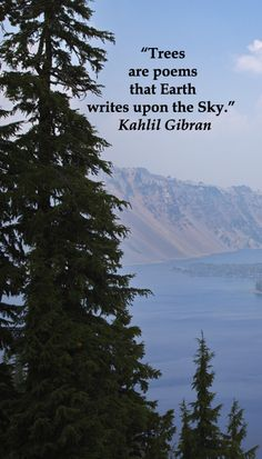 """""""Trees are poems that Earth writes upon the Sky.""""  Kahlil Gibran – On CRATER LAKE NATIONAL PARK image -- Explore twelve, essential nature quotes at http://www.examiner.com/article/twelve-essential-nature-quotations"""
