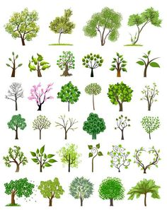 Tree illustration vector pictures 24 New ideas Art And Illustration, Art Illustrations, Free Vector Graphics, Vector Art, Vector Stock, Vector Trees, Leaves Vector, Trendy Tree, Tree Leaves