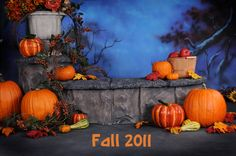 Halloween camping decorations photo booths 20 Ideas for 2019 Halloween Prop, Halloween Camping Decorations, Halloween Mini Session, Halloween Fotos, Fall Harvest Decorations, Halloween Backdrop, Trendy Halloween, Halloween Pictures, Fall Halloween