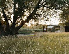 Mediterranean feel at Stone Edge farm in Sonoma, California landscaped by Andrea Cochran