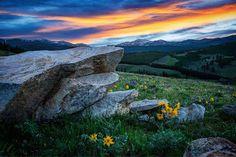 Schoolhouse Park Wildflowers Wyoming- [OC][2500 x 1600]