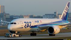 ANA - All Nippon Airways JA813A aircraft at Frankfurt photo