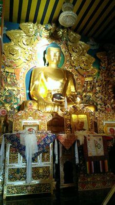 Buddha sunrice