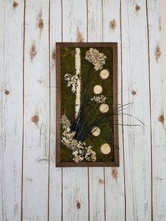 Moss wall art with birch bear grass and lichen. Handmade