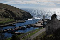 Lybster Harbour #Caithness www.havenhouseart.com