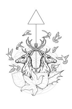 Collection of Geometric Line Drawings on Illustration Served