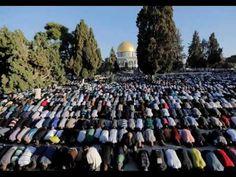 #Terrorismo I veri islamici: i moderati o i terroristi?: (32)