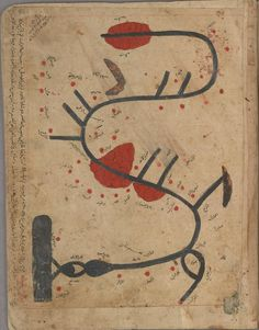 Map of the river Tigris.  From the Egyptian 11th century manuscript Kitāb Gharāʾib al-funūn wa-mulaḥ al-ʿuyūn (The Book of Curiosities of th...
